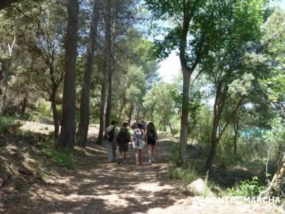 Parque Natural de las Lagunas de Ruidera - Ruidera; rutas culturales madrid; grupo senderismo